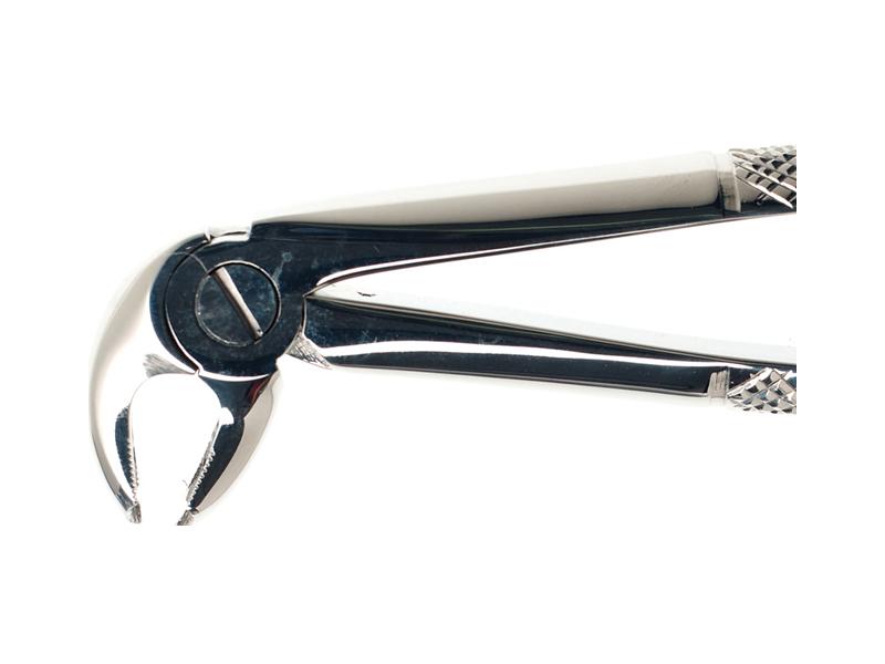 Forceps - Lower - Lower Molar Hawks Bill #22 (Duralast)